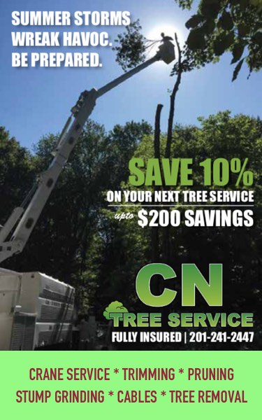 CN Tree Service | The Pulse USA Denville