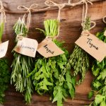 How to Harvest, Dry, and Store Fresh Herbs